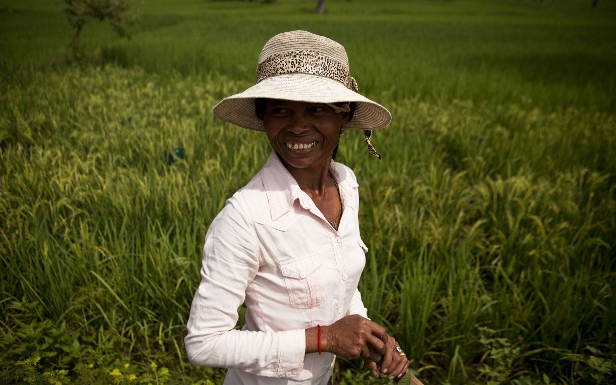 Meas Sopheap at her rice field in Krang Lahong, Cambodia. Photo: Patrick Brown/Panos for Oxfam America