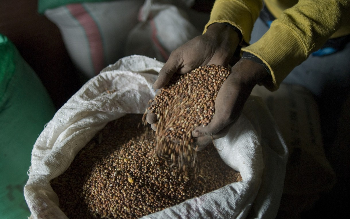 Grain in the stores of the Jalala Women's Assocation in the Shashemene District of Ethiopia. The current US food aid program requires the purchase and shipment of US-sourced food to locations around the world. This is outdated and inefficient. Purchasing food locally is faster and less expensive, which is critical as more frequent natural disasters and humanitarian crises leave millions of families struggling to survive. Photo: Eva-Lotta Jansson / Oxfam America